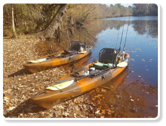 Blueway Adventures provides Wilderness Systems fishing kayaks on kayak fishing charters