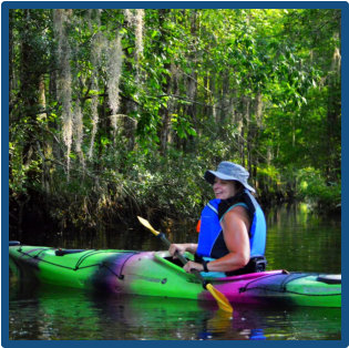 Kayak Scenic Ashley River Summerville-Blackwater Tour with grand Live Oaks, Bald Eagles, marsh grasses