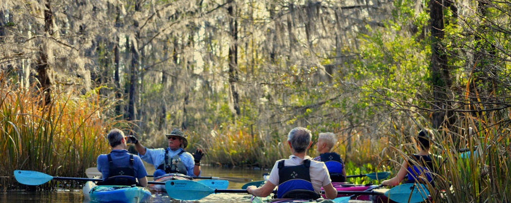 Most popular kayaking tours Charleston, Summerville, Santee-swamp tours, river tours, lake marion, lake Moultrie