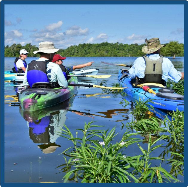 Kayaking Lake Marion - Cypress Swamp Historic Island Kayak Tours